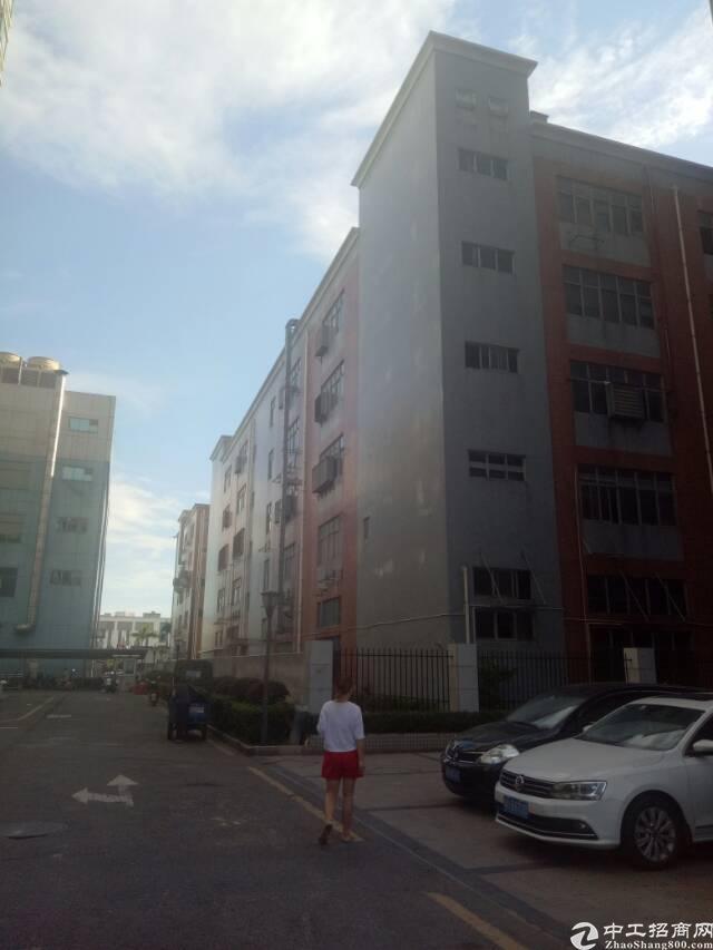 沙井东环路边新出楼上一整层3260平方带装修厂房