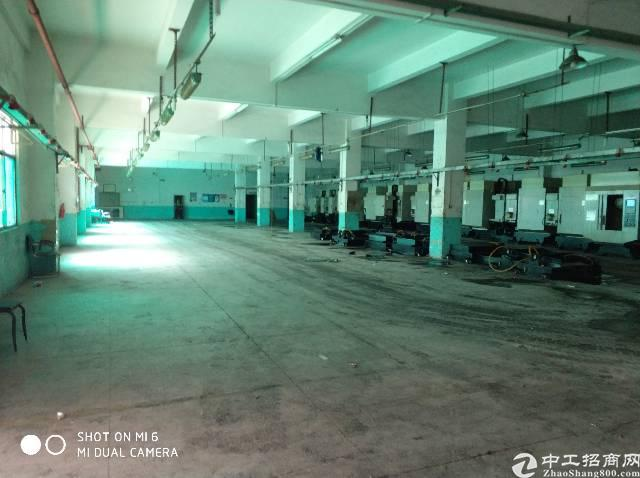 标准独院红本厂房7000平米急售-图6