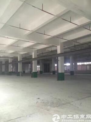 黄江镇原房东标准厂房一楼高度5米