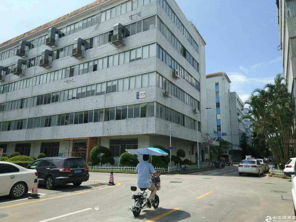 坂田五和地铁站或龙壁工业区附近整层1100平方两层可分租