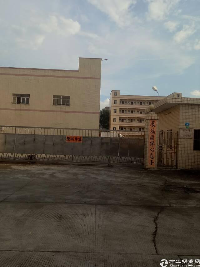 茶山独院标准厂房4500方出租