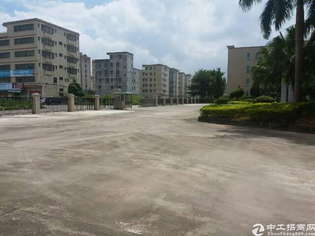 深圳新出5万平独院,可做电商,培训学校,电子,等等
