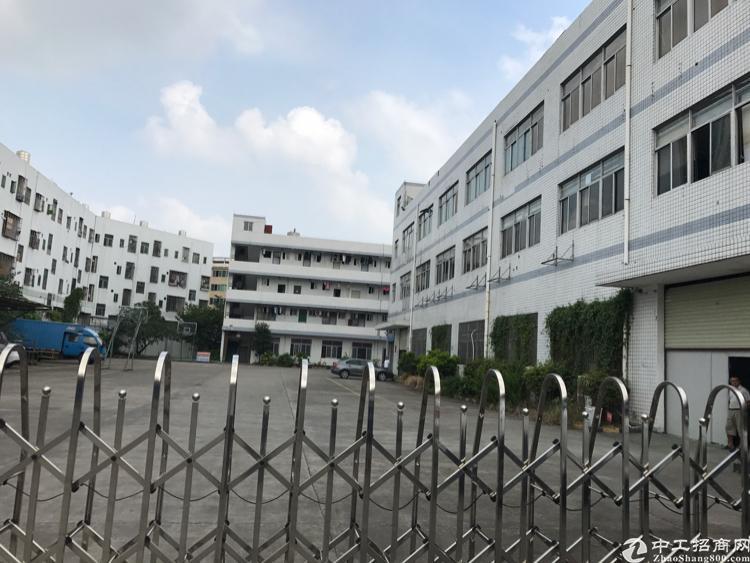 龙华大浪商业中心对面精装修红本独院8000平21元