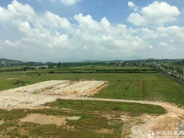 惠州白花镇21356平方工业用地出售,价格面议