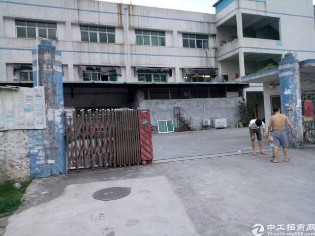 宝鹅工业区1500平米厂房招租