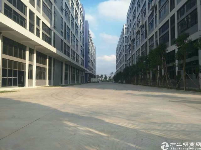 松岗高速路口新出一楼2500平米厂房