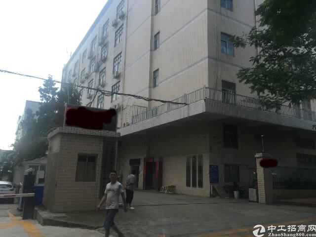 兴东地铁口旁新出楼上带豪华装修500平米出租