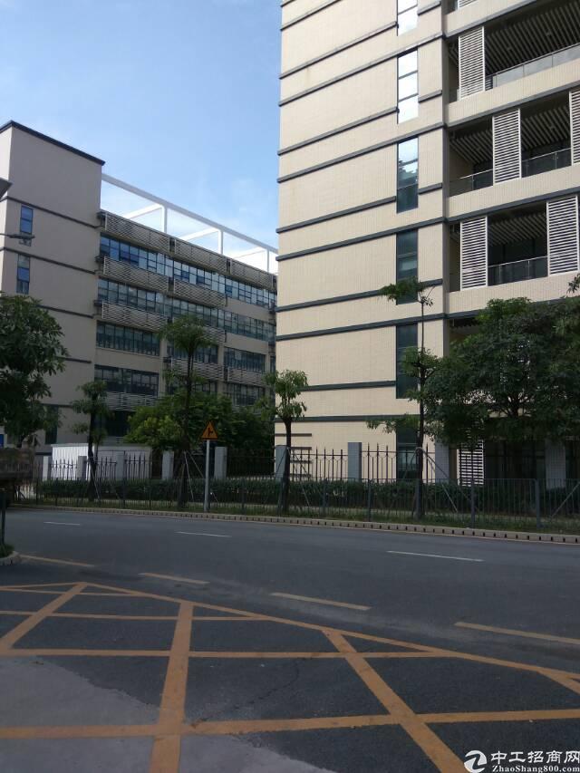 出售广州白云物流园整栋厂房