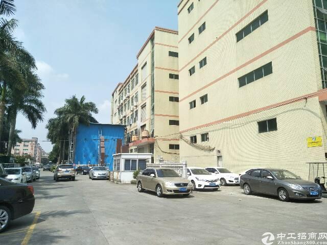 光明原房东田寮加油站旁1-4层6600平一楼6米已空