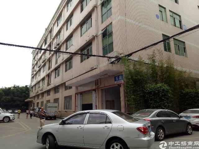 福永宝安大道地铁口附近科技园1800平招租-图6