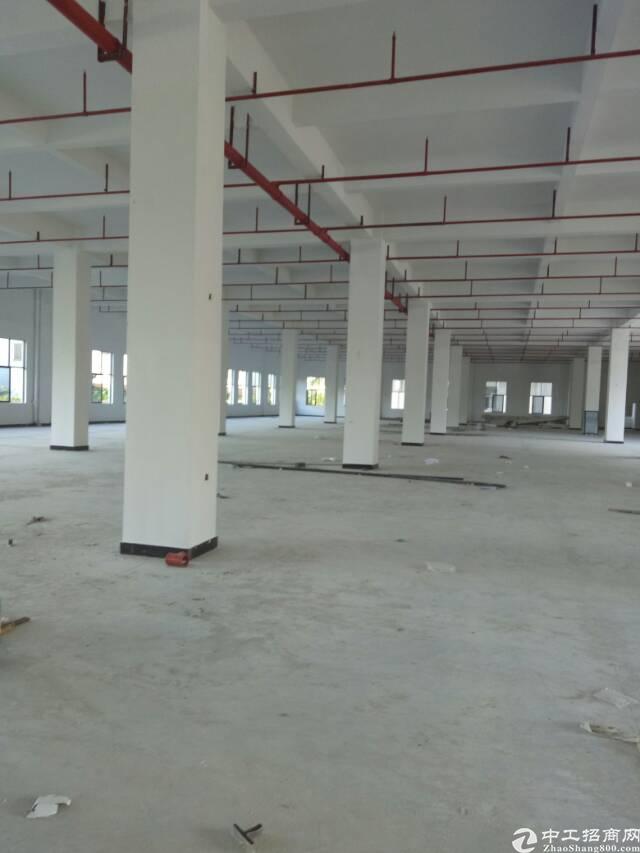 标准厂房一楼