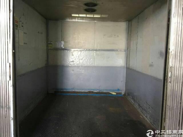 龙华新出原房东带喷淋带卸货平台厂房-图4