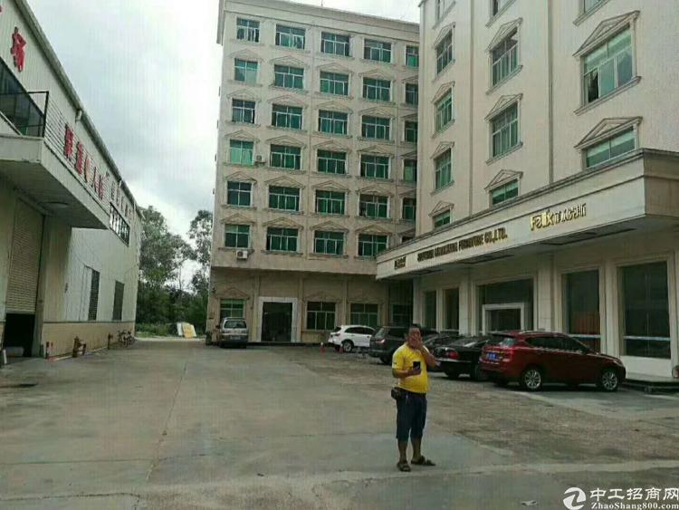 惠阳惠东独栋标准厂房出租