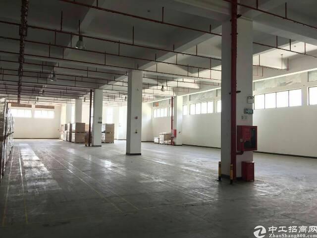 龙华新出原房东带喷淋带卸货平台厂房-图6
