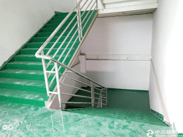 清溪三中管理区全新钢构