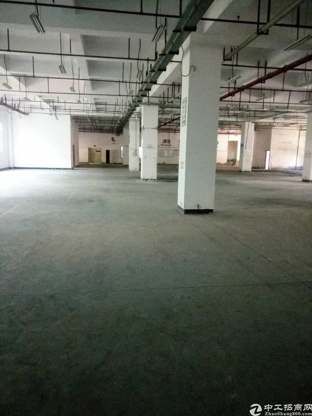 松岗主干道边新出红本高新工业园6000平米
