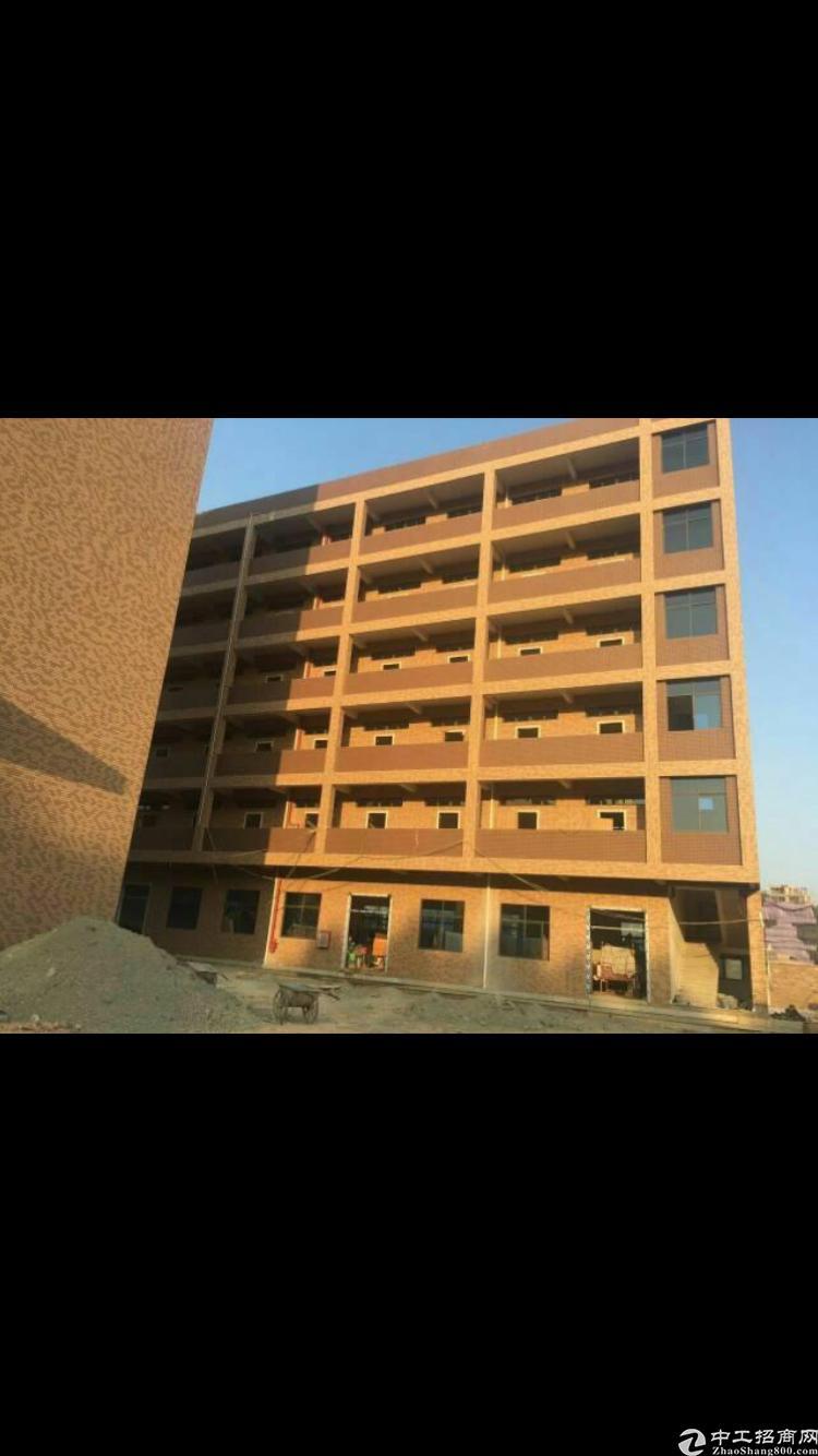 厂房出售占地面积4180平方 建楼面积8000