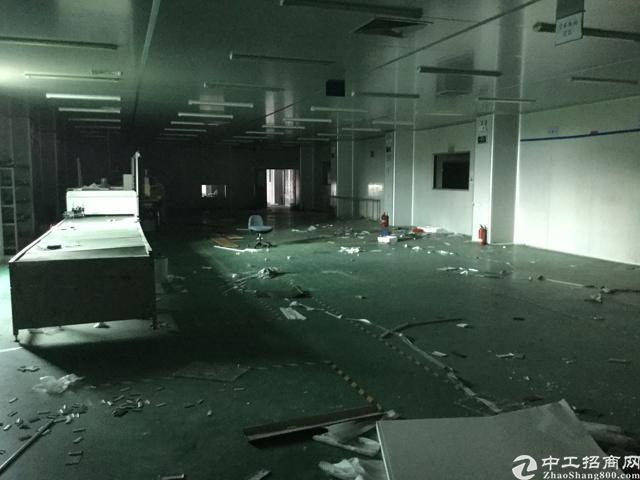 塘厦林村出口独院厂房分租1-2楼2600平方米-图3