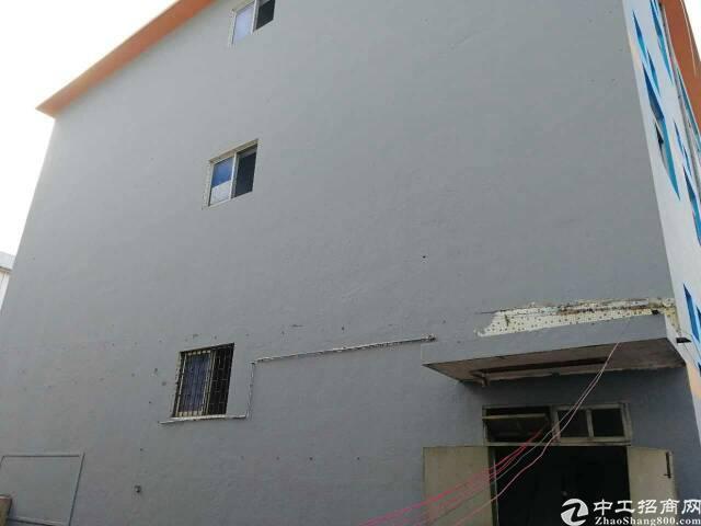 横岗荷坳 独门独院 15800平1楼5米带装修电梯厂房可