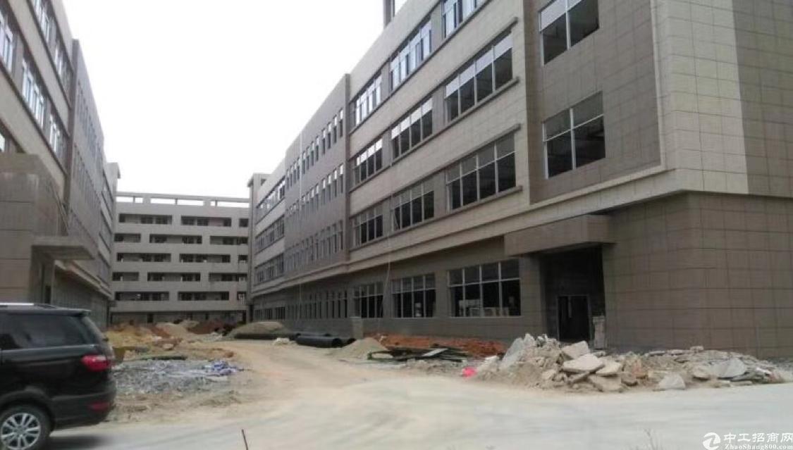 原房东厂房12000平方2栋可以分一栋