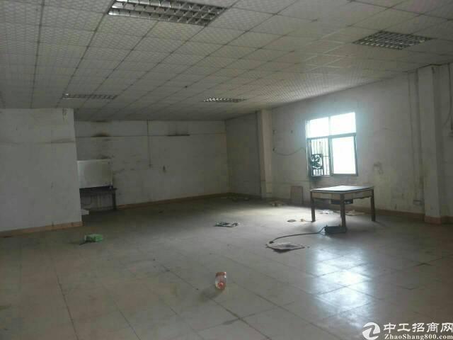 惠州新出钢构厂房出售-图3