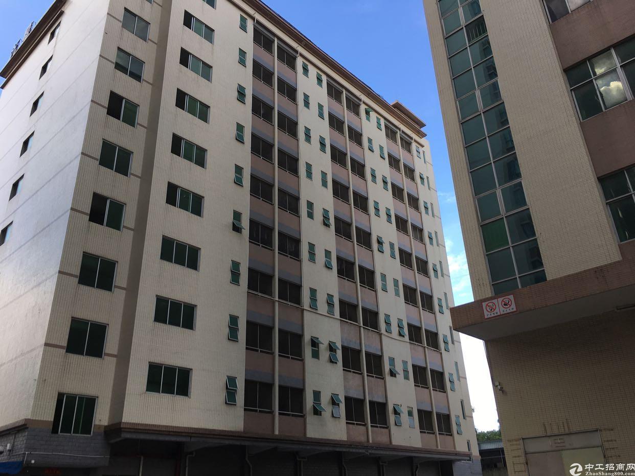 坂田杨美地铁站附近带装修办公室厂房3960平方大小分租