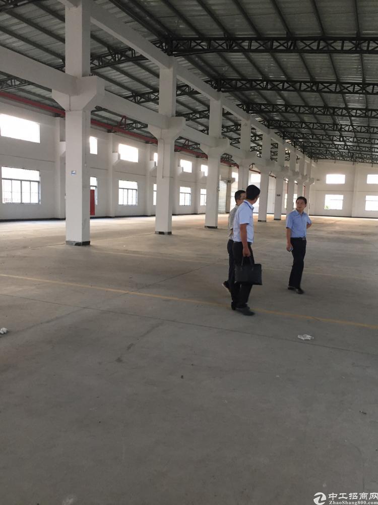 惠州  新圩3000平钢构厂房卖4000一平