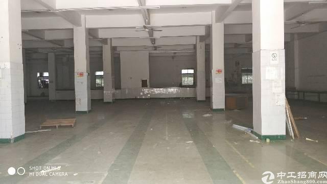 福永怀德大行物流园一楼新空出1350平米豪华装修办公室无转让