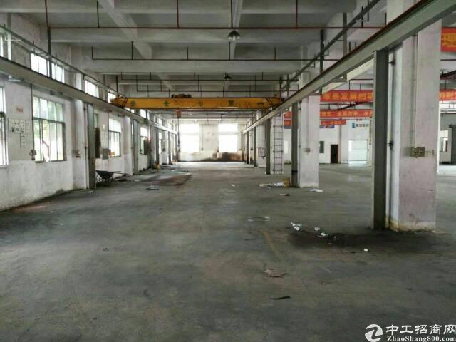 新出原房东一楼1500平方