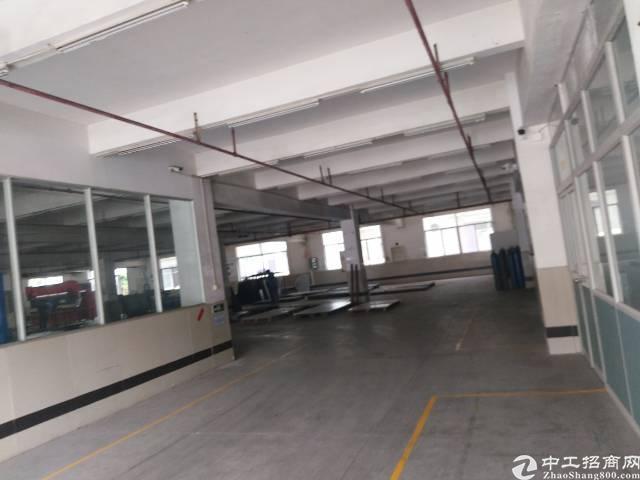 厚街镇下汴村s省边新空出独院厂房出租-图3