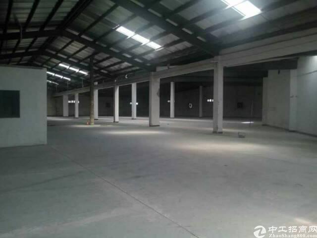 大朗新出独院单一层厂房3500平方,滴水8米
