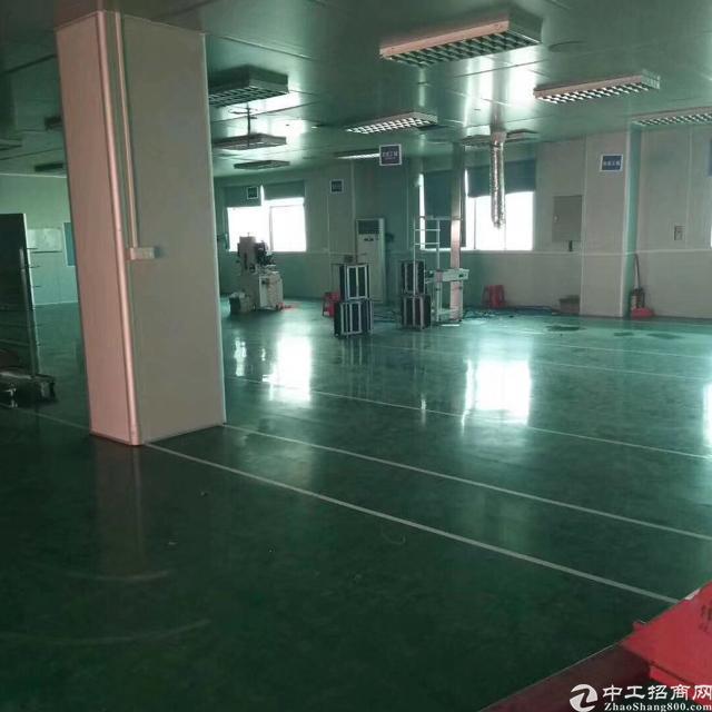 塘厦林村出口独院厂房分租1-2楼2600平方米-图5
