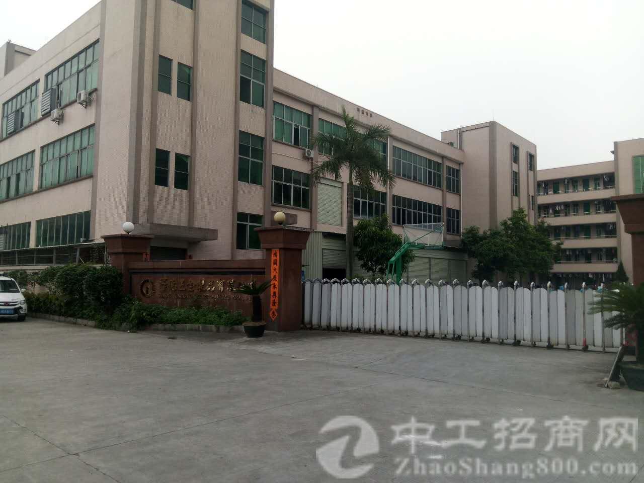 茶山公路旁全新独院厂房招租有消防证三吨电梯,厂房5000
