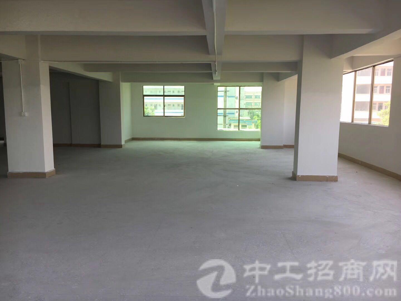 塘厦林村全新厂房招租1000平米