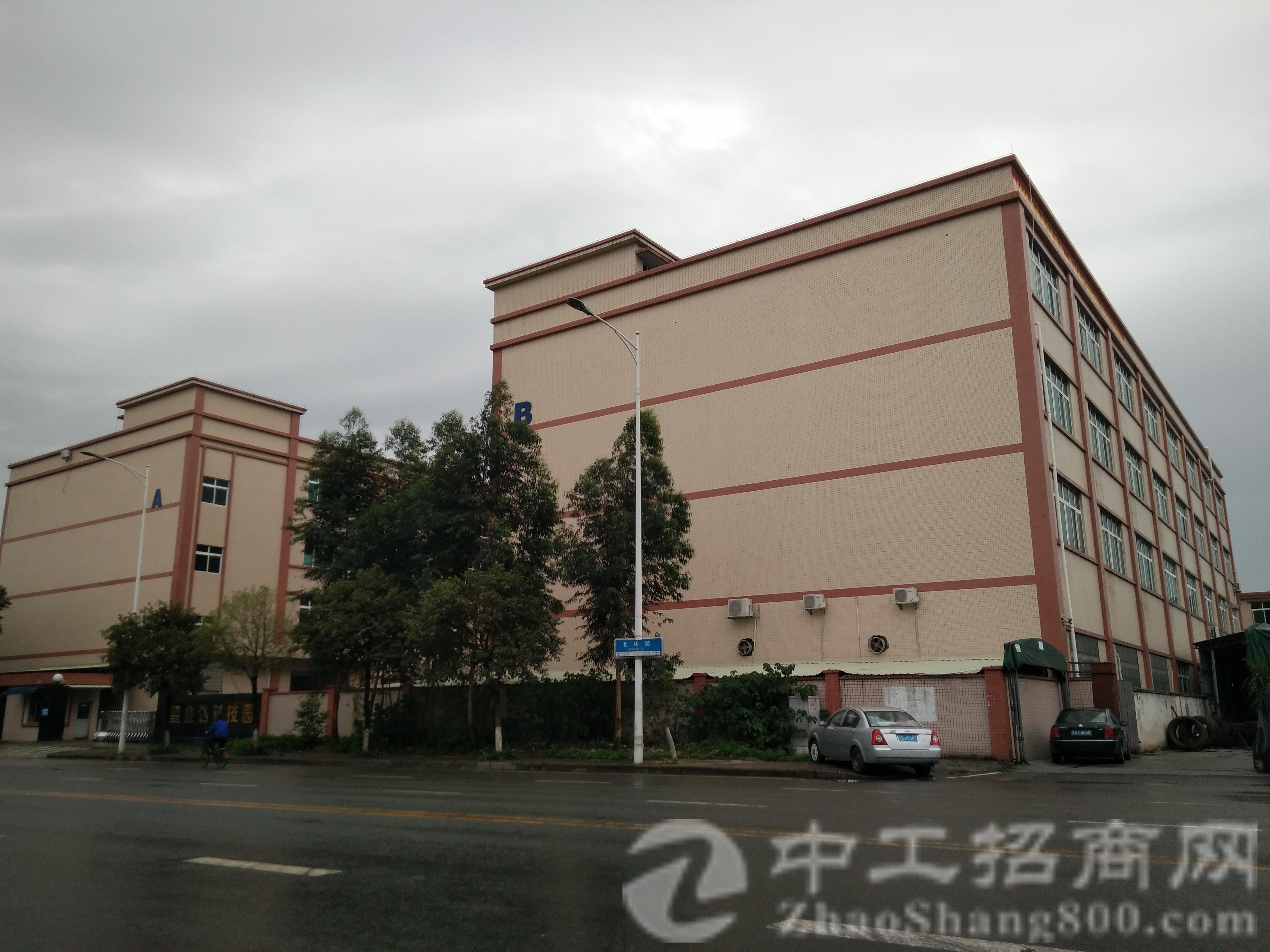茶山公路旁全新独院厂房招租有消防证三吨电梯,厂房5000-图2