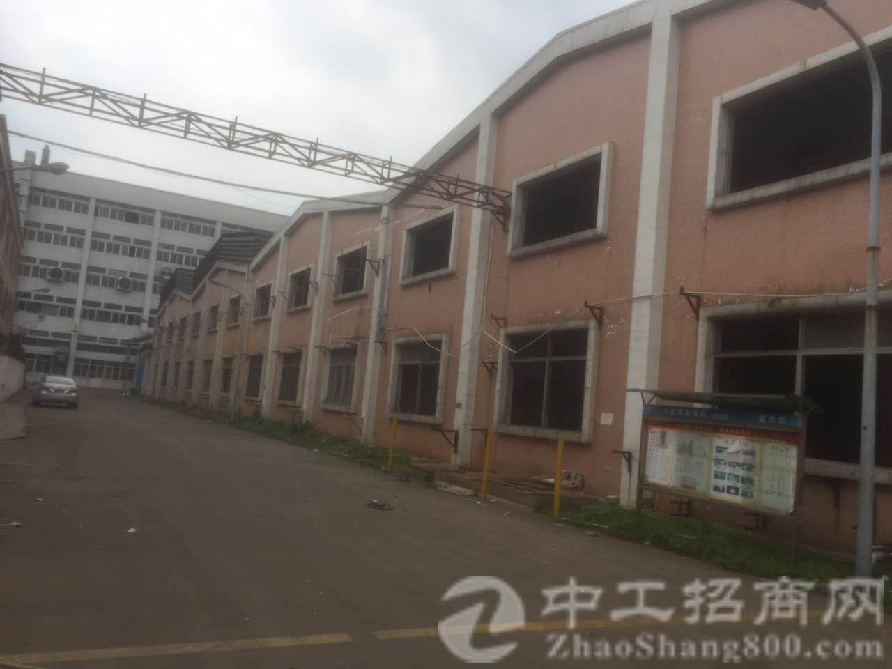 茶山新出实业客分租一层 厂房3500可挂10吨行车 电315-图2