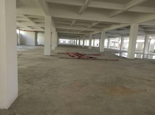 标准厂房重工业厂一楼带牛角火爆招租