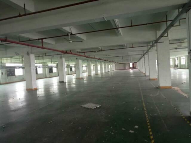 惠州惠环高速出口处原房东独院厂房9800平方招租-图4
