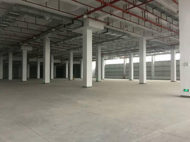 省道旁可做4S店仓库厂房13500平方招租可分租-图4