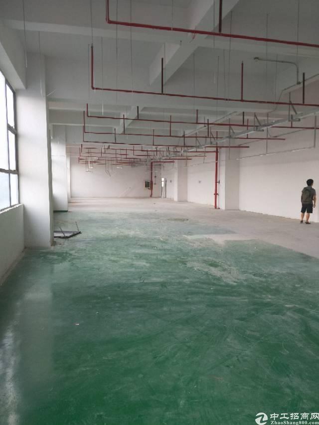 公明楼上新厂房780平长条形