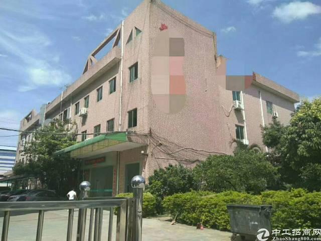 松岗江边松福大道边上新出楼上带豪华装修厂1200平原房东