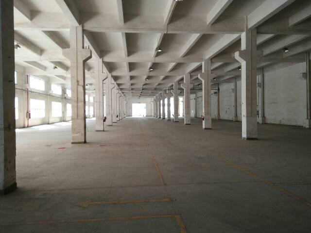 清溪镇小面积标准厂房500平方带牛角招租