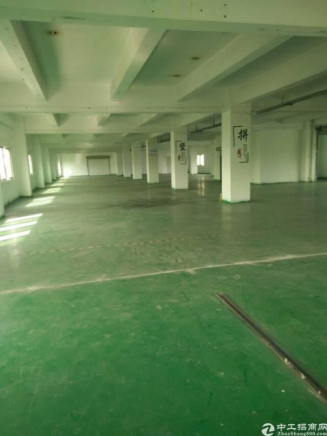 东莞市厚街镇低价出租独门独院6000平方标准厂房