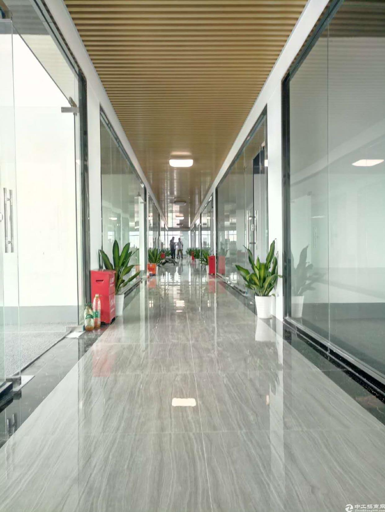 大浪英泰工业区附近,精装修创客园,交通便利,价格便宜。