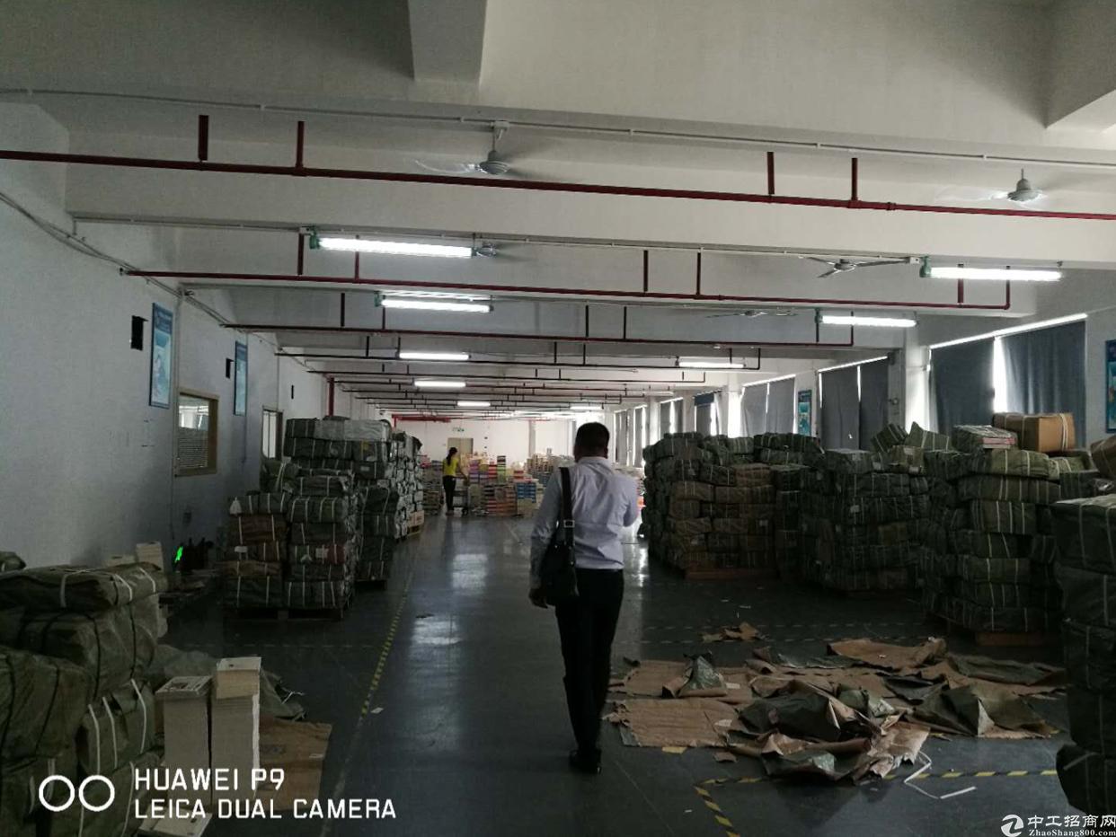 布吉南岭新出厂房600平方