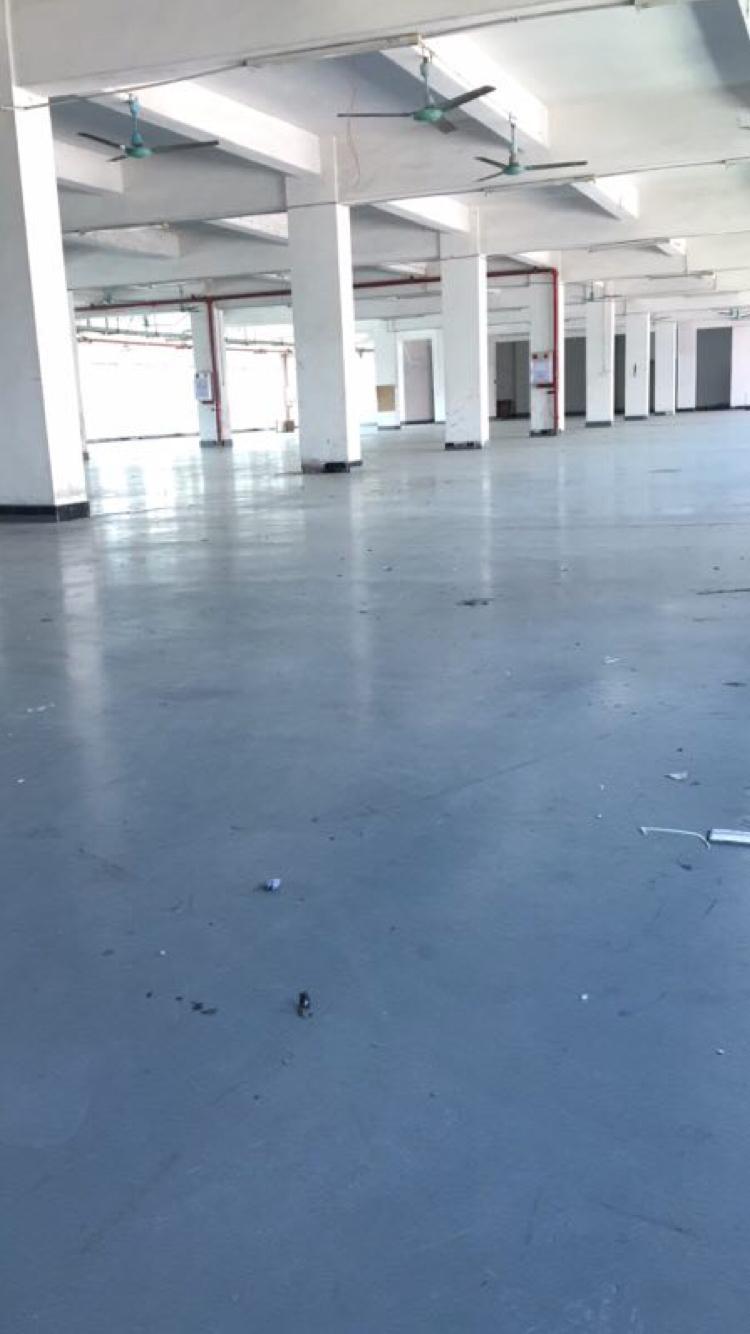 万江环城路边新出标准楼房2F2300平,现成装修办公300平