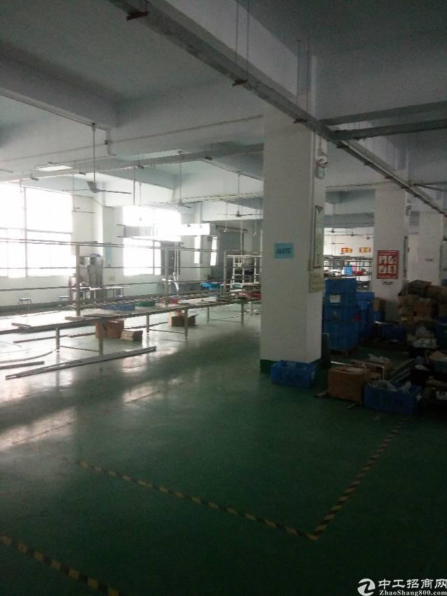 松岗大田洋新出楼上精装修厂房1200平米