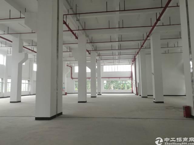 一楼全新厂房3600平米出租-图2