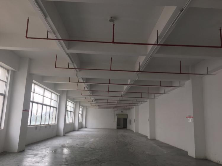 龙华大浪高新产业园单层6100平方厂房招租-图6