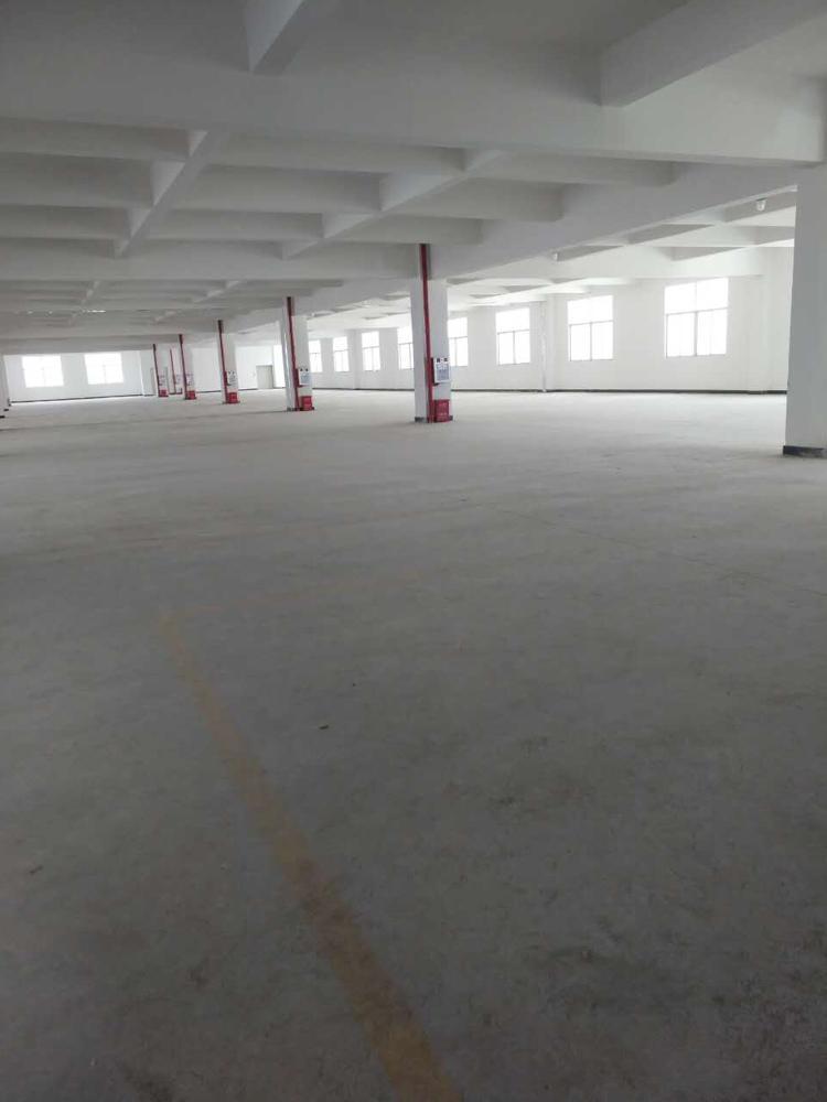 大岭山镇新出全新标准二楼2500平方低价急出租